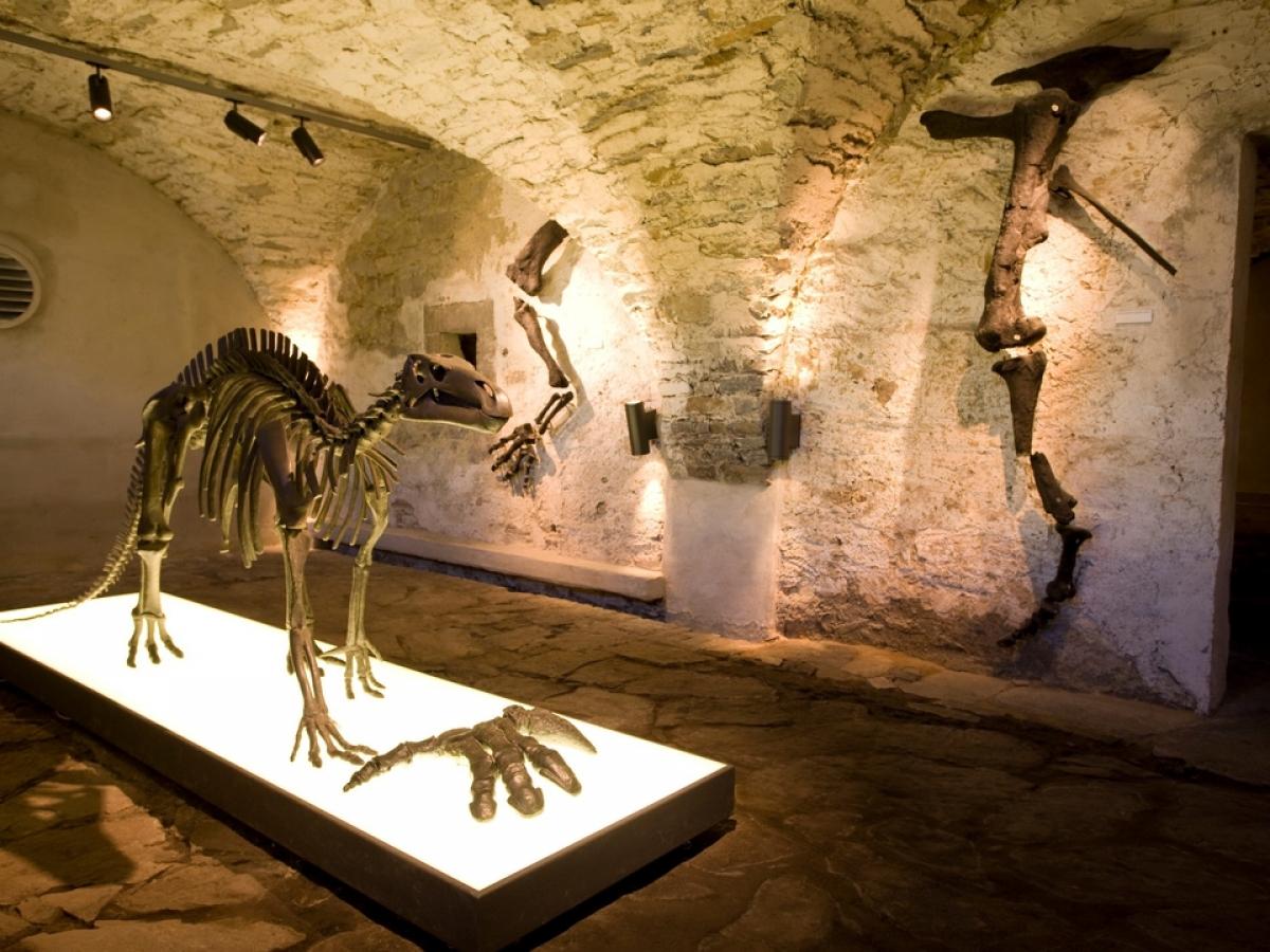 Geoparkstation / Geofoyer Museum Haus Hövener Brilon