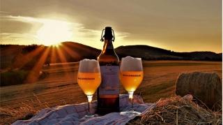 Bier-Erlebnis-Pfad Hallenberg
